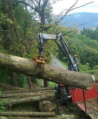 Zamboni legna di zamboni stefano portale del legno trentino for Vendita legna da ardere