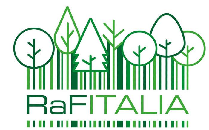Calendario Taglio Legna 2020.Calendario Del Taglio Del Legno Portale Del Legno Trentino